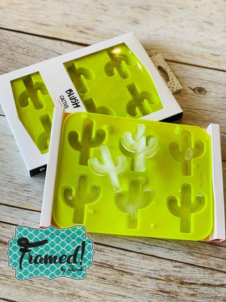 Cactus Monogram Box Cube Strays